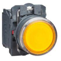 Schneider LED-es világító nyomógomb, narancssárga, 110V, XB5AW35G5