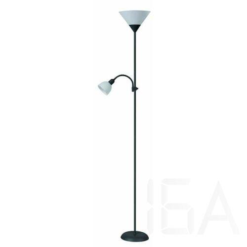 Rábalux 4062 Action állólámpa, olvasókarral, H180cm