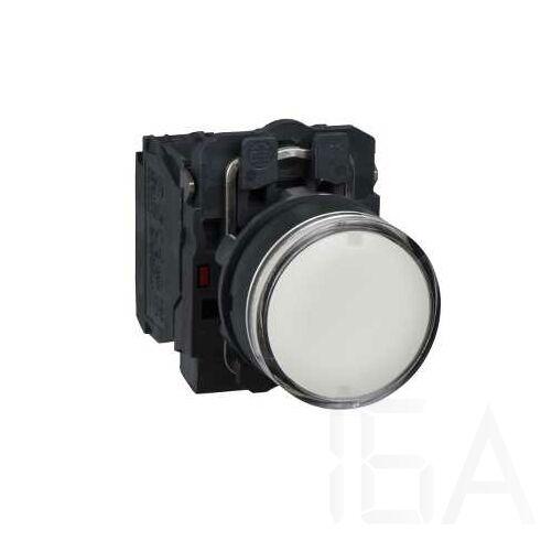 Schneider Komplett világító nyomógomb, fehér, 250V, 1NO+1NC, XB5AW3165